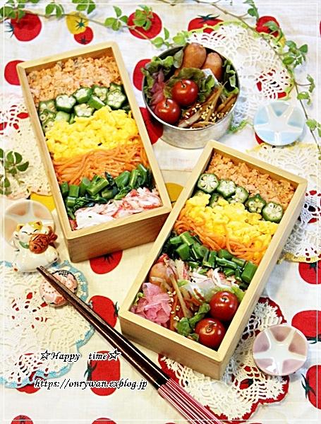 あるもののっけて押し寿司風弁当と今夜は白菜で♪_f0348032_18424807.jpg