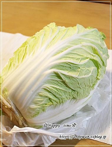 あるもののっけて押し寿司風弁当と今夜は白菜で♪_f0348032_18425616.jpg