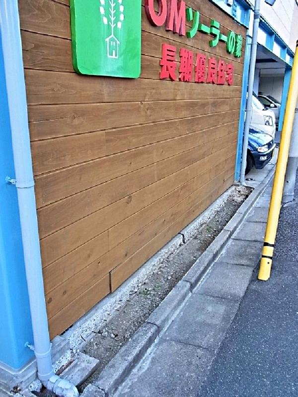 会社の雑木スペースの剪定_c0019551_20163913.jpg