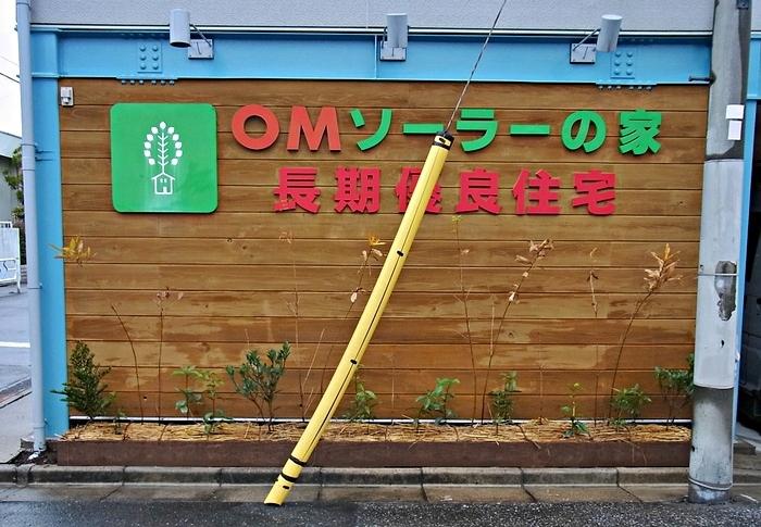 会社の雑木スペースの剪定_c0019551_20164278.jpg