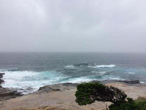 朝から大雨です。。_f0164662_14271131.jpeg