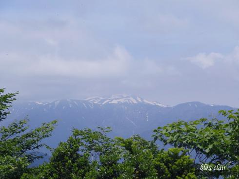 大日ヶ岳へ♪_b0270372_12482468.jpg