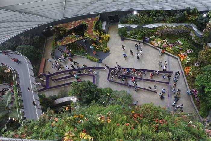 子連れシンガポール旅行2日目 動物園とカトンとガーデンズ編_f0167281_12295229.jpg