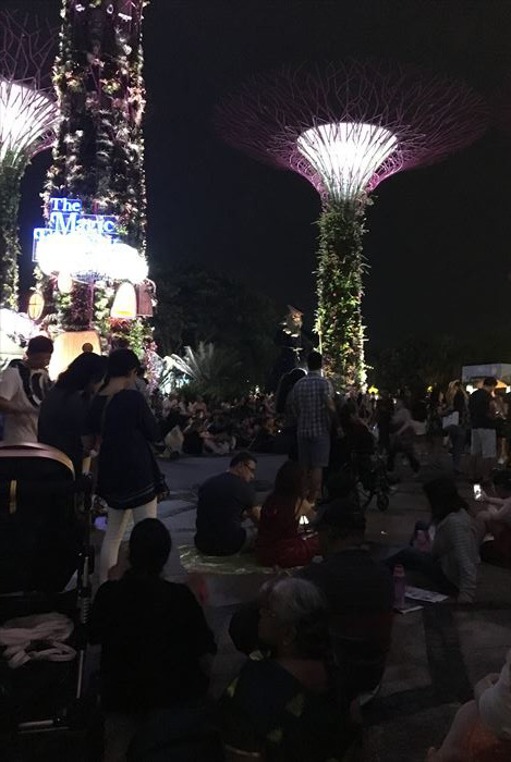 子連れシンガポール旅行2日目 動物園とカトンとガーデンズ編_f0167281_12330424.jpg
