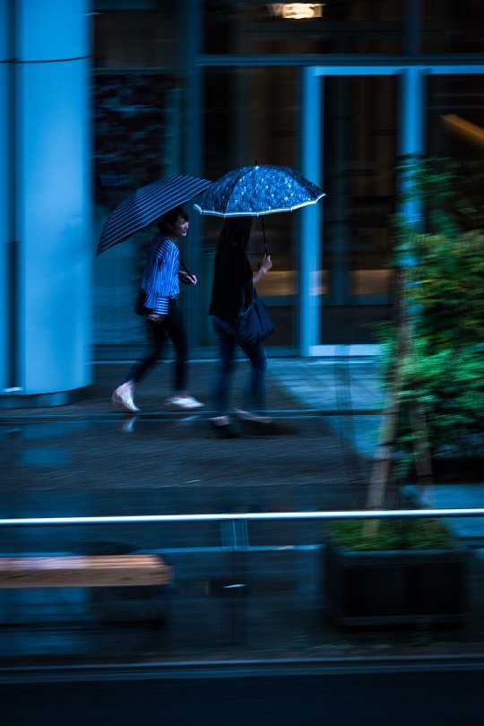 Umbrellas Passing By_d0353489_18264909.jpg