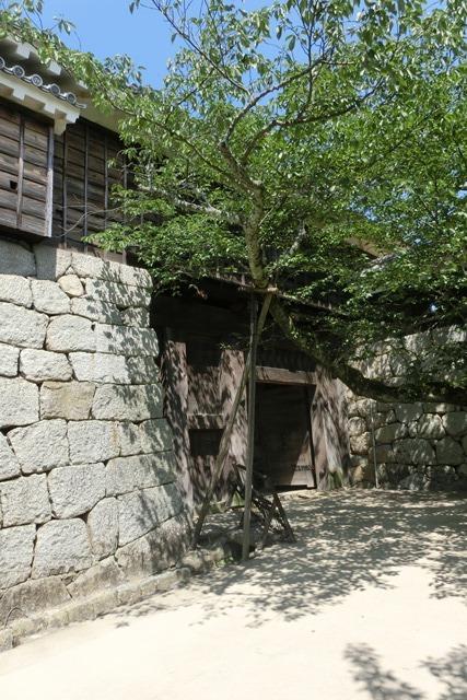 名城松山城を訪ねる旅、坊ちゃん列車路面電車の行き交う楽しい町松山・・・道後温泉と松山城、名君加藤義明_d0181492_16355697.jpg