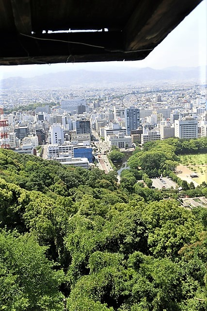 名城松山城を訪ねる旅、坊ちゃん列車路面電車の行き交う楽しい町松山・・・道後温泉と松山城、名君加藤義明_d0181492_22142599.jpg