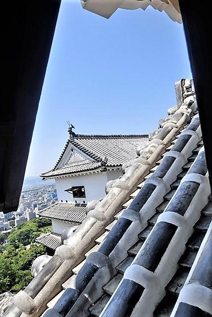 名城松山城を訪ねる旅、坊ちゃん列車路面電車の行き交う楽しい町松山・・・道後温泉と松山城、名君加藤義明_d0181492_22145941.jpg