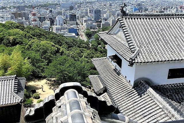 名城松山城を訪ねる旅、坊ちゃん列車路面電車の行き交う楽しい町松山・・・道後温泉と松山城、名君加藤義明_d0181492_22154262.jpg