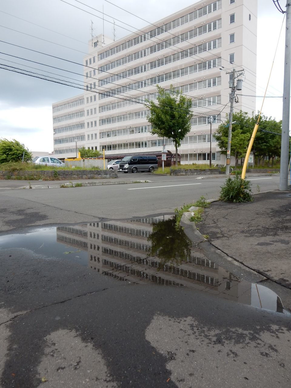 雨に逃げられた(?)夏至_c0025115_21564155.jpg