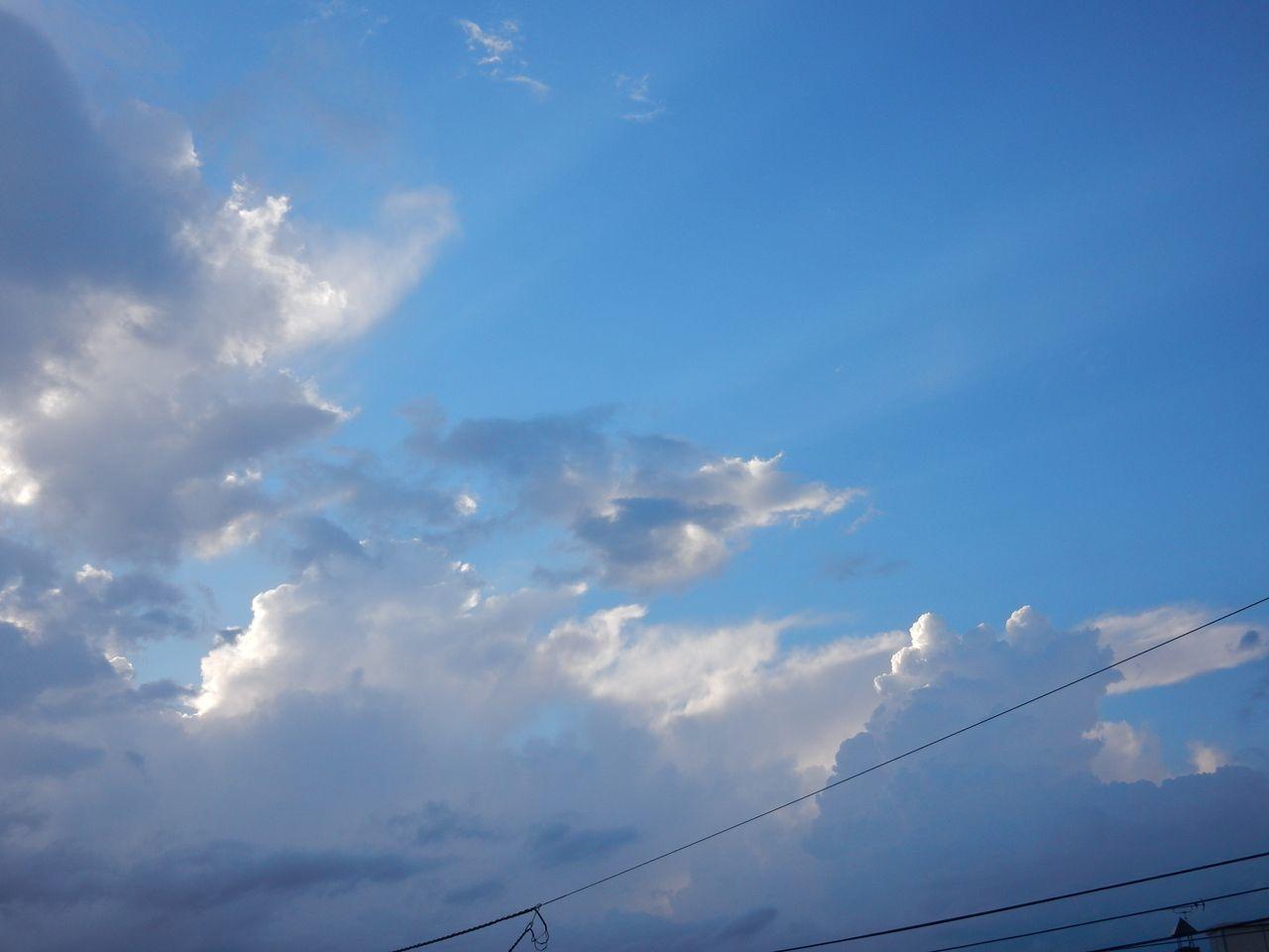 雨に逃げられた(?)夏至_c0025115_22011710.jpg