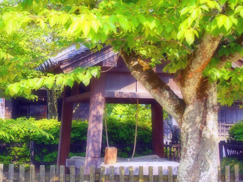 松山城_d0295818_11254460.jpg