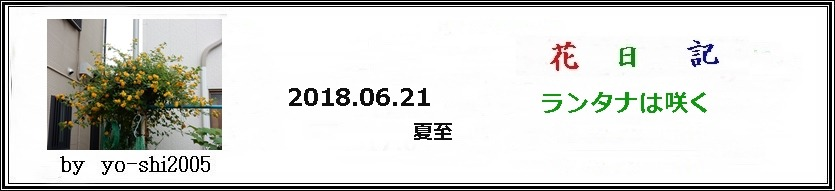 e0033229_1814588.jpg