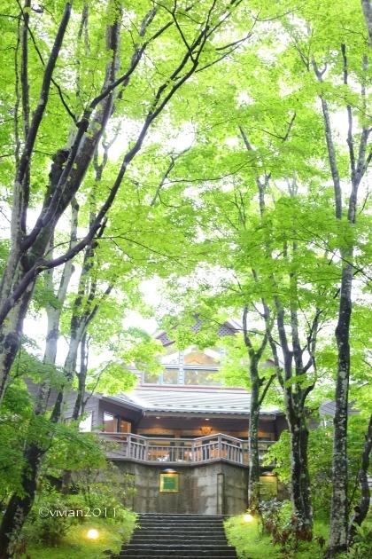 日光 山のレストラン ~キーワードは「キリフリ谷」~ - 日々の贈り物(私の宇都宮生活)