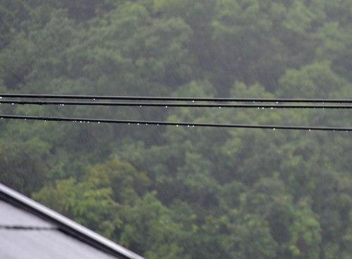 雨の日にはジャズを聴く (7) ~ ややこしい雨の歌 ~_b0102572_1828428.jpg
