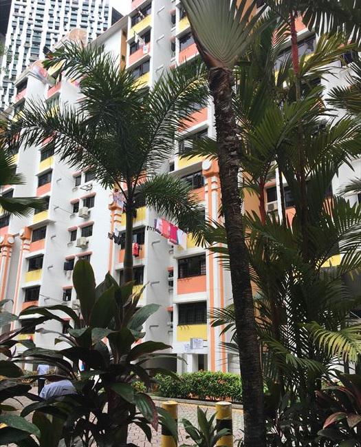 子連れシンガポール旅行4日目 ポピアとトランポリンとチャイナタウングルメツアー_f0167281_21080154.jpg