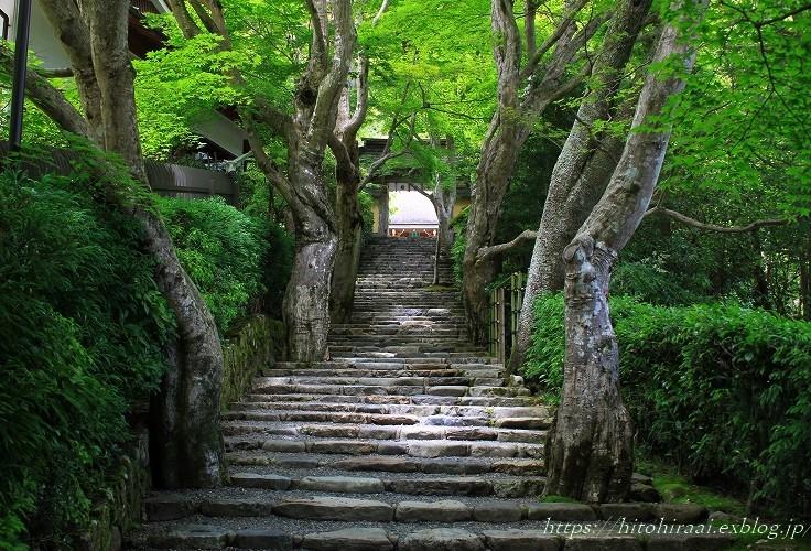 京都大原寂光院_f0374092_21405317.jpg
