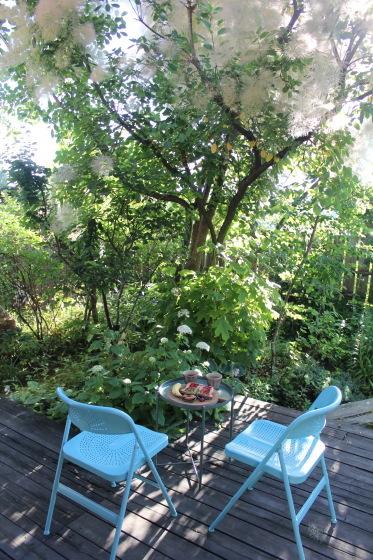 今朝の庭_b0132338_07285293.jpeg