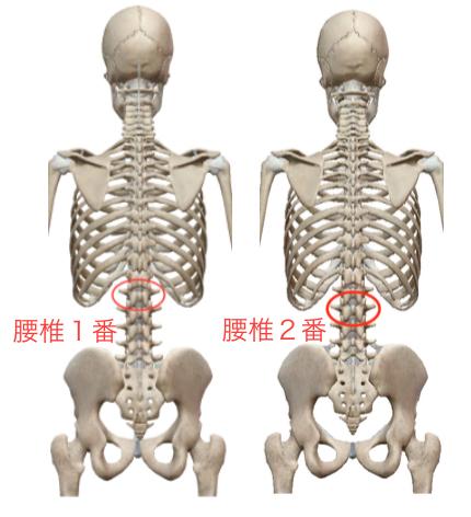 疲れが抜けないときには肋骨「◯の字」を整えます 〜ある日の施術より〜_e0073240_10240023.jpg
