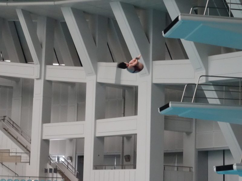 水泳髙板飛込競技でメイ3位入賞・・・2018関西選手権(大阪プール)_c0108460_21201544.jpg