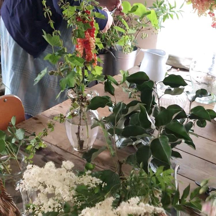 7月の花あそび_a0259565_15323295.jpeg