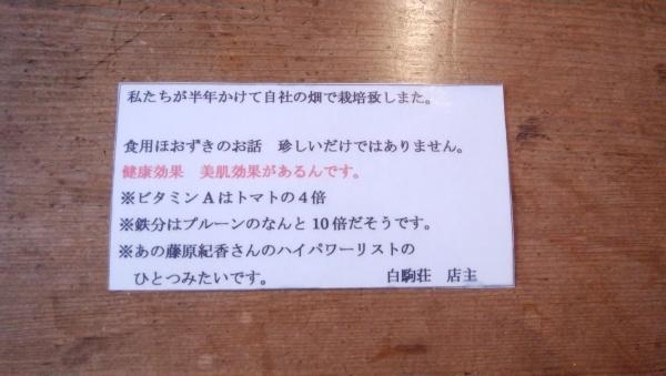 白駒荘のほおずきレアチーズケーキ_a0351368_16390188.jpg