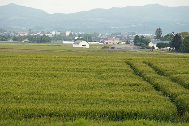 車から見る景観_d0162994_05331549.jpg