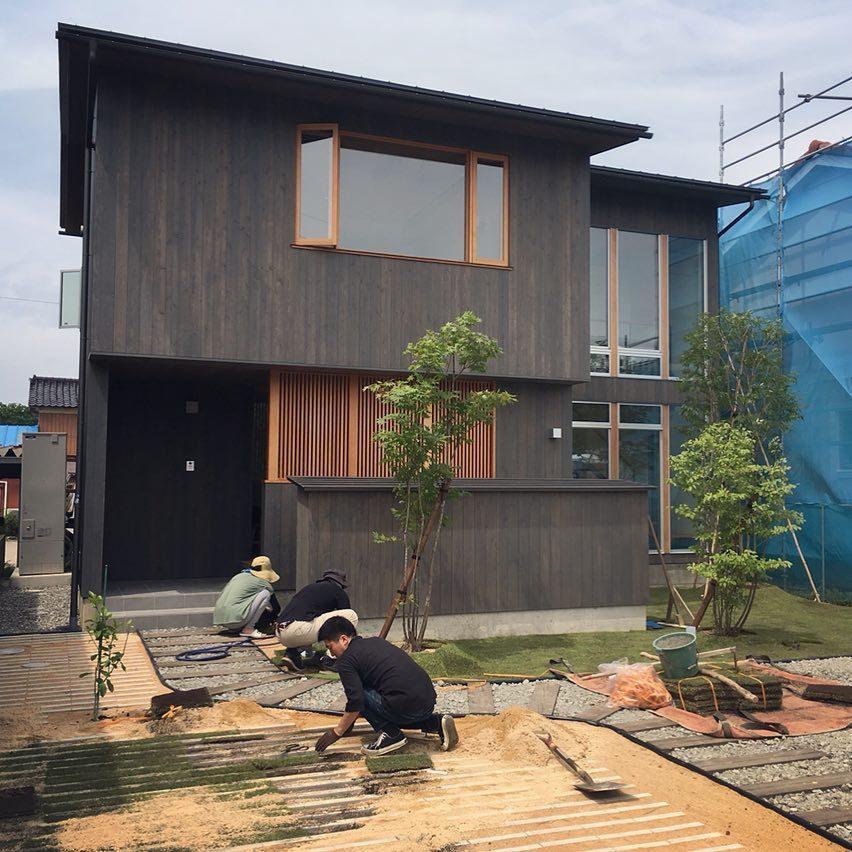 DIY芝生張り_f0191999_14043903.jpg