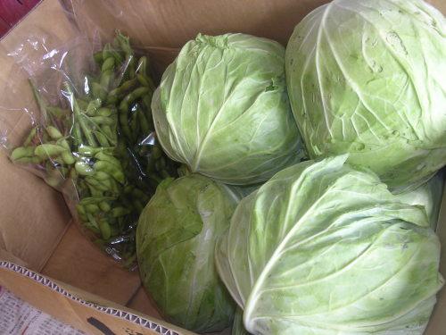 ガレージセールで無農薬野菜。_e0295926_16323691.jpg