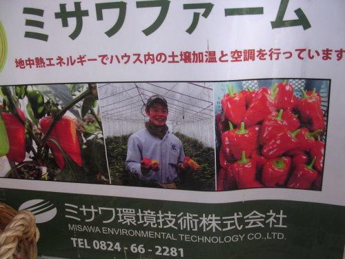 ガレージセールで無農薬野菜。_e0295926_16330424.jpg