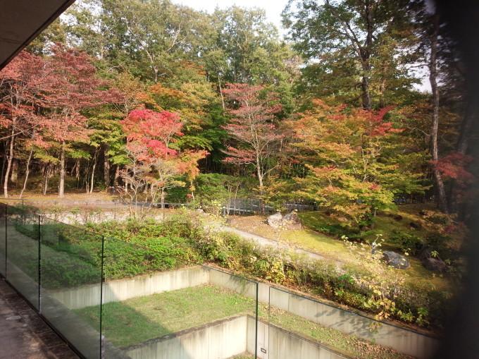 美しい紅葉の季節 、そしておしゃれの季節!_c0054646_11462460.jpg