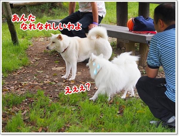 d0013149_01143996.jpg