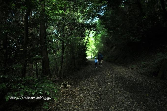 ひとり山歩き・・・コアジサイのあと_e0348754_14021789.jpg