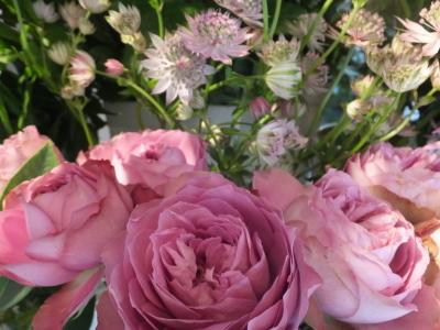 オークリーフ(ピンクのアナベル紫陽花)_f0049672_11461118.jpg