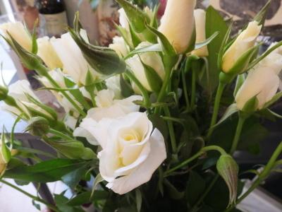 オークリーフ(ピンクのアナベル紫陽花)_f0049672_12102903.jpg