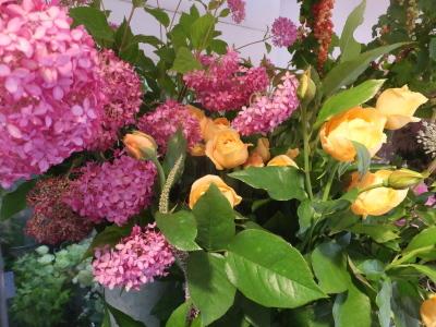 オークリーフ(ピンクのアナベル紫陽花)_f0049672_12104258.jpg