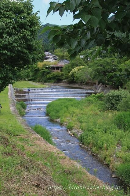 京都 大原の里_f0374092_21021377.jpg