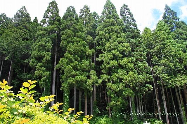 京都 大原の里_f0374092_21062926.jpg