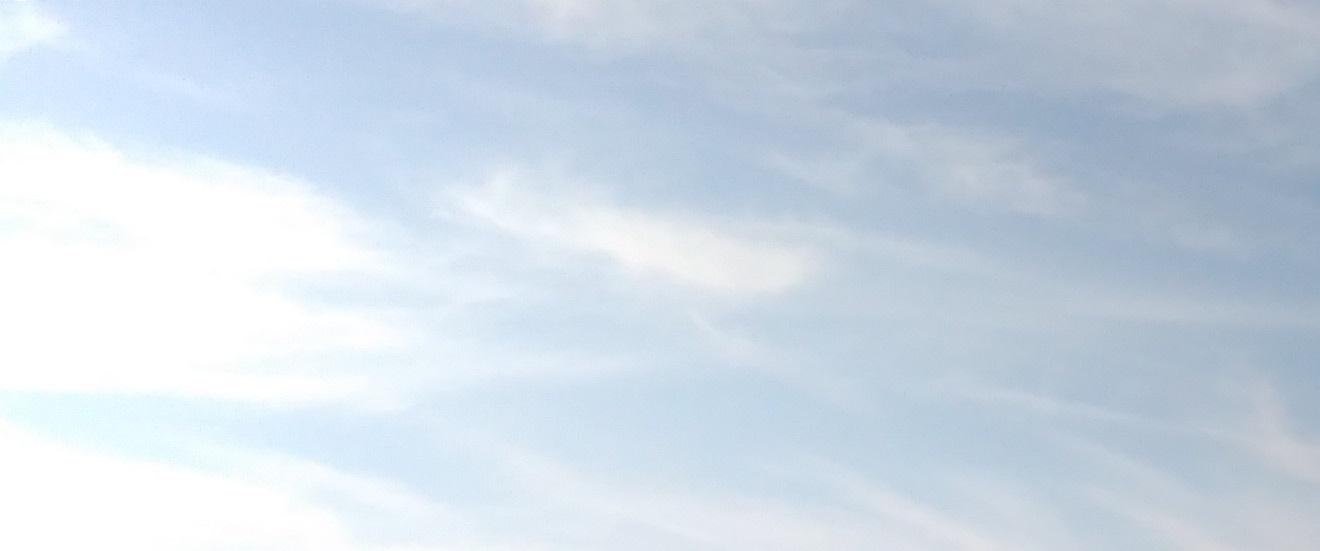 「檻の会」6月例会の報告_e0375210_21465060.jpg
