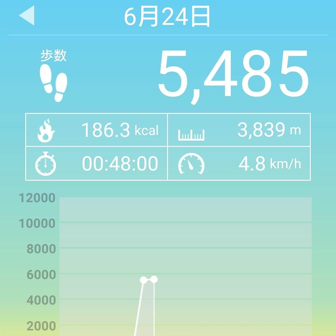 ++トリミング&朝散歩*++_e0354456_09302901.jpg