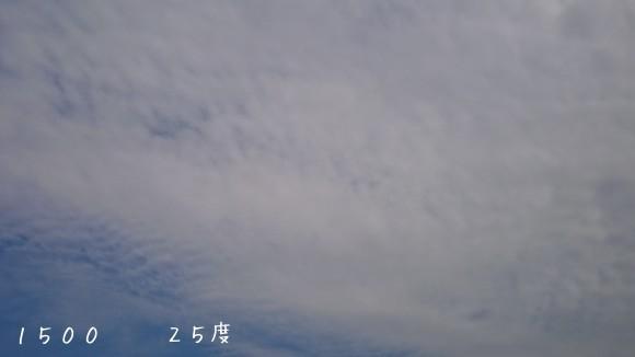 b0306158_16041655.jpg