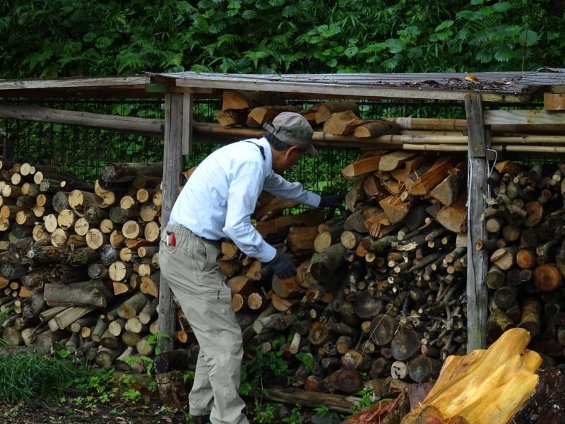 伐採木片付け&小枝鉛筆クラフト・・・うみべの森_c0108460_17421407.jpg