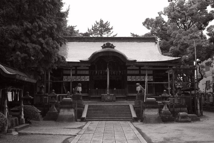 茨木神社_d0349265_16202446.jpg