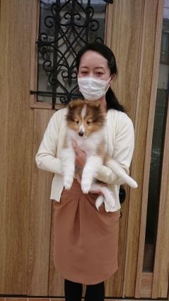 今回、最後の子犬のお迎えがございました。_a0139367_19421067.jpg
