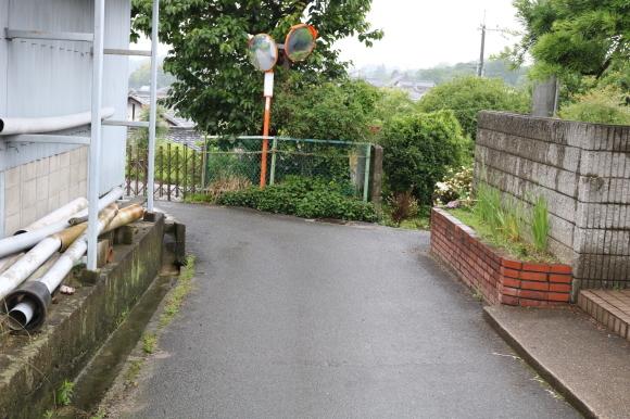 (番外編)pitipiti登山部 外山(奈良市中山町)に登る_c0001670_21263368.jpg