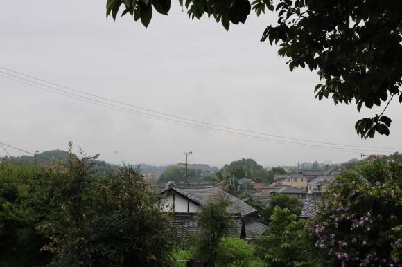 (番外編)pitipiti登山部 外山(奈良市中山町)に登る_c0001670_21314365.jpg