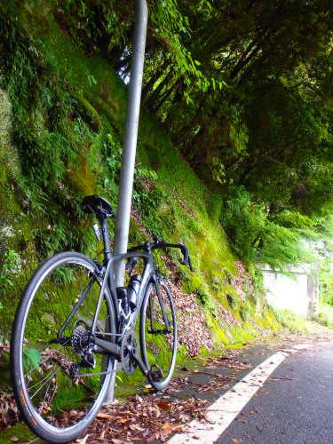 茨木山中をブラブラ_a0345079_13461724.jpg