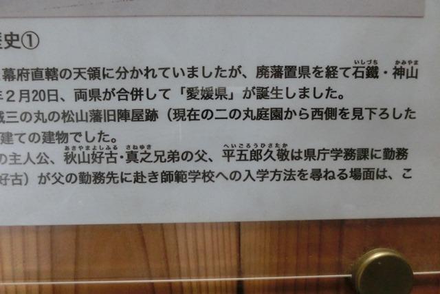 藤田八束の鉄道写真@四国松山での路面電車と松山の街並み、松山城と路面電車のお洒落なコンビ_d0181492_20594622.jpg