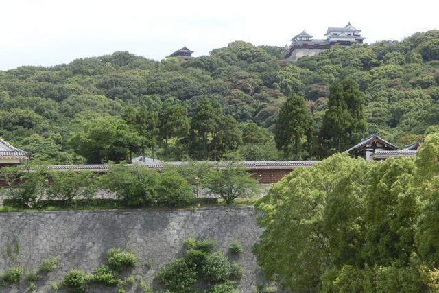 藤田八束の鉄道写真@四国松山での路面電車と松山の街並み、松山城と路面電車のお洒落なコンビ_d0181492_21035449.jpg