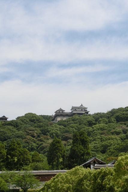 藤田八束の鉄道写真@四国松山での路面電車と松山の街並み、松山城と路面電車のお洒落なコンビ_d0181492_21040140.jpg